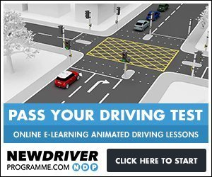 animated driving lessons