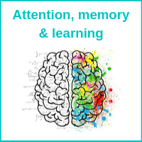 attention, memory and learning course
